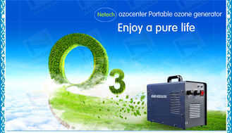 5g / Hr Adjustable Ozone Generator For Hotel Air Purification